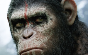 dawn_of_the_planet_of_the_apes_2014-wide